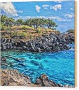 Cove At Mahukona Wood Print