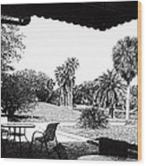 Cove Cay Country Club Wood Print