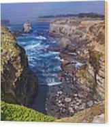 Cove On The Mendocino Coast Wood Print