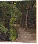 Cove Path Wood Print