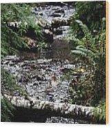 Covell Creek 1 Wood Print