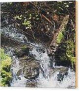 Covell Creek 4 Wood Print
