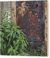 Covered In Rust Wood Print