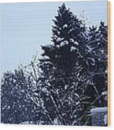 Covered Snow Trees Wood Print