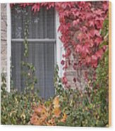 Covered Window Wood Print by Margaret McDermott
