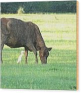 Cow And Friend Abstract Wood Print