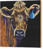 Cow Art - Lucky Number Seven Wood Print