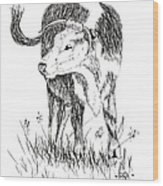 Cow In Pen And Ink Wood Print