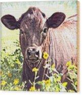 Cow In Wildflowers Wood Print by Ella Kaye Dickey