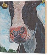 Cow No 05. 0556 Irish Friesian Cow Wood Print