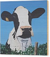 Cow On A Ditch Wood Print