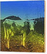 Cow On Lsd Wood Print