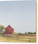 Cow Pasture Wood Print