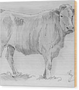 Cow Pencil Drawing Wood Print