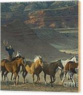 Cowboy Driving Horses Wood Print