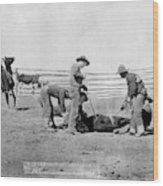 Cowboys, 1888 Wood Print