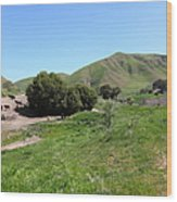 Cows Along The Rolling Landscapes Of The Black Diamond Mines In Antioch California 5d22291 Wood Print by Wingsdomain Art and Photography