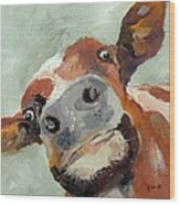 Cow's Eye View Wood Print