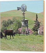 Cows Home On The Ranch At The Black Diamond Mines In Antioch California 5d22345 Wood Print by Wingsdomain Art and Photography
