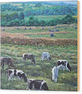 Cows In A Field In The Devon Countryside Wood Print