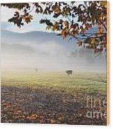 Cows In The Fog Wood Print
