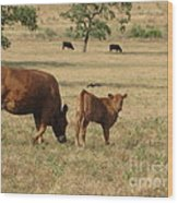Cows In The Pasture Wood Print