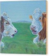 Cows Lying Down Chatting Wood Print