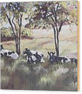 Cows Pasture Wood Print