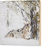 Coyote In The Snow Wood Print