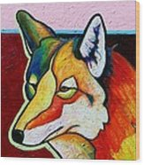 Coyote Portrait Wood Print