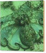 Cozumel Octopus Wood Print