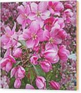 Crab Apple Blossoms Wood Print