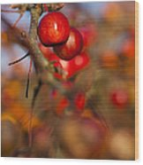 Crab Apple Bright Wood Print