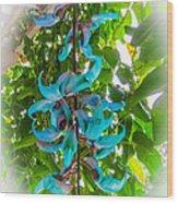 Crab Claw Vine In Kula Maui Wood Print