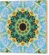 Crab Nebula I Wood Print