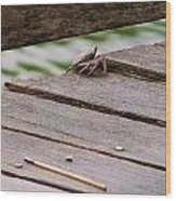 Crab On The Pier  Wood Print