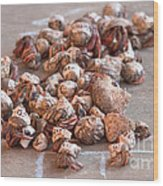 Crab Race Wood Print