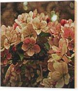 Crabapple In Bloom Wood Print
