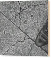 Crack In The Pavement Wood Print
