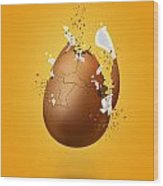Cracked Egg Wood Print by Andrea Aycock