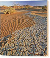 Cracking Dirt And Dunes Namib Desert Wood Print