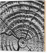 Cracks In Time Wood Print