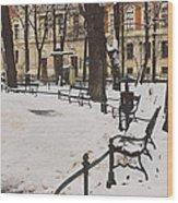 Cracow Park Wood Print