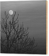 Cradled Moon Wood Print