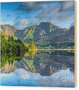 Craf Nant Lake Wood Print