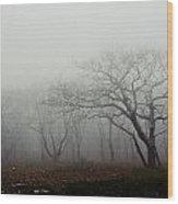 Craggy Gardens Mist Wood Print