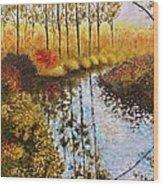 Cranberry Bog Wood Print