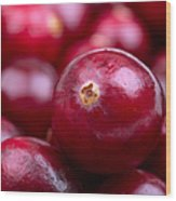 Cranberry Closeup Wood Print by Jane Rix