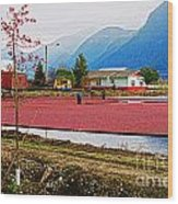 Cranberry Field Workers Wood Print