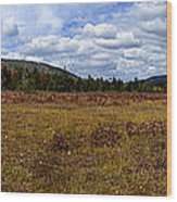 Cranberry Glades Panoramic Wood Print